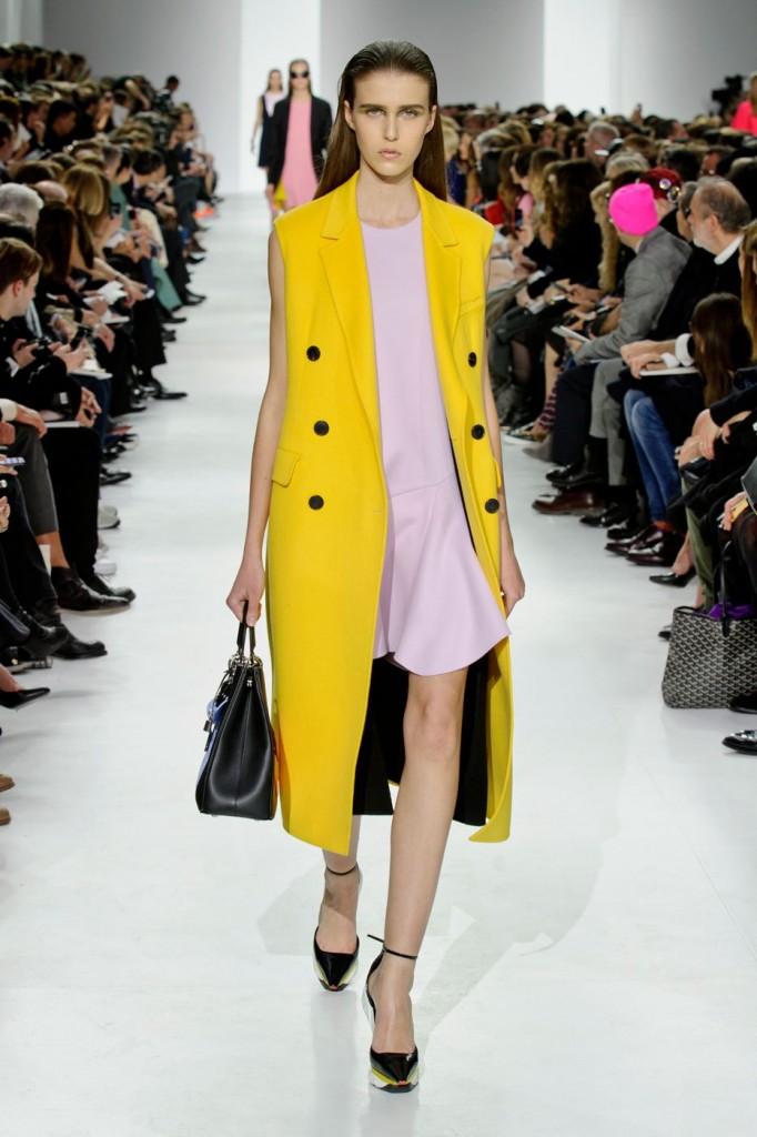 Dior Fall 14