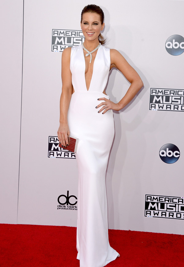 American music Awards 2014 best dressed