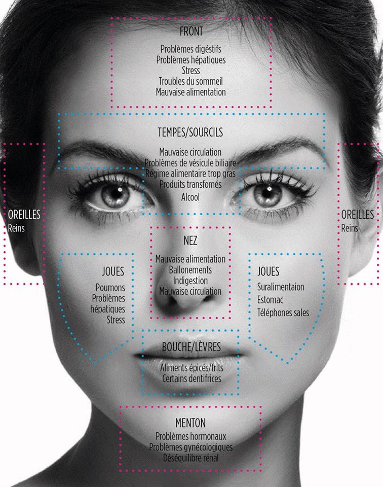 définir la cause de son acné face mapping