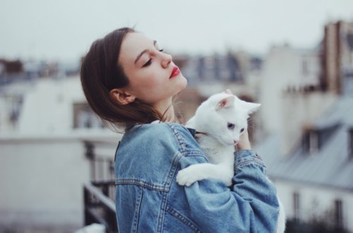 fille chat